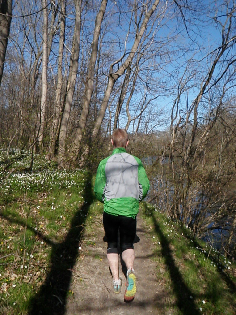 Patagonia Nine trails jacket