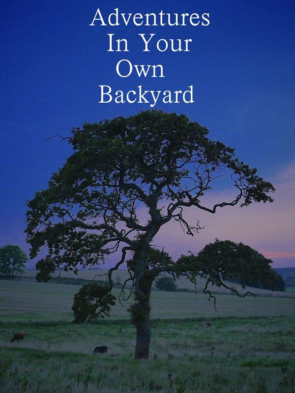 Filmanmeldelse af 'Adventures in Your Own Backyard'